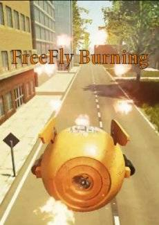 FreeFly Burning